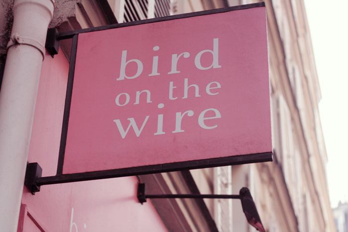 bird-on-the-wire