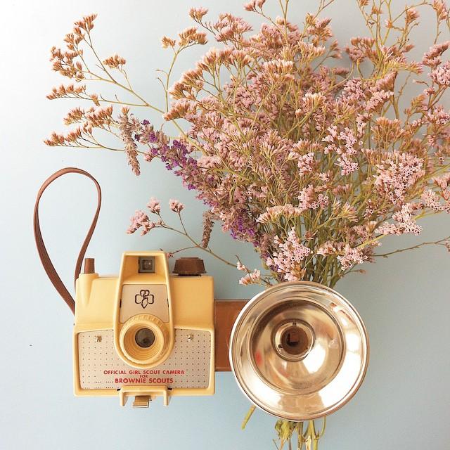 ?Envie de m'amuser avec les fleurs et les vieux appareils ? #girlscoutcamera #bronwiecamera #lomography