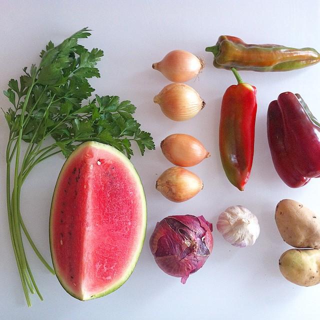 Premier test de panier de fruits et légumes, à moi les brochettes de pastèques ??
