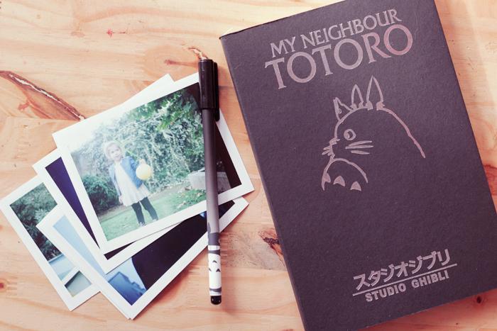 totoro-livre