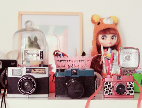 diana-collection-camera