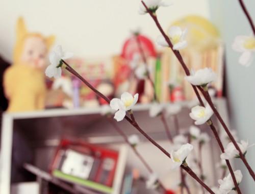flower-nature-et-découverte