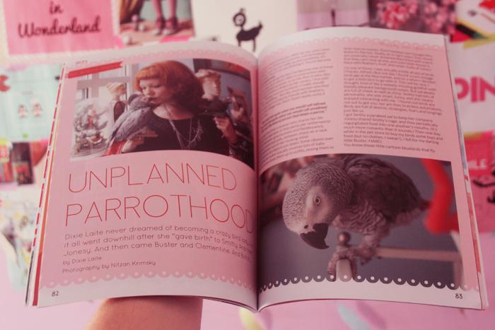 gift-magazine3