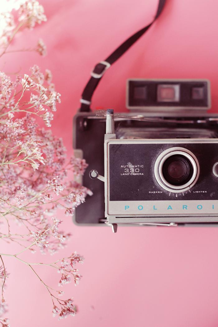 scouts-camera-5